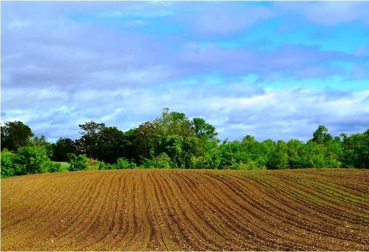 analisis de suelos agricolas soil factory lab