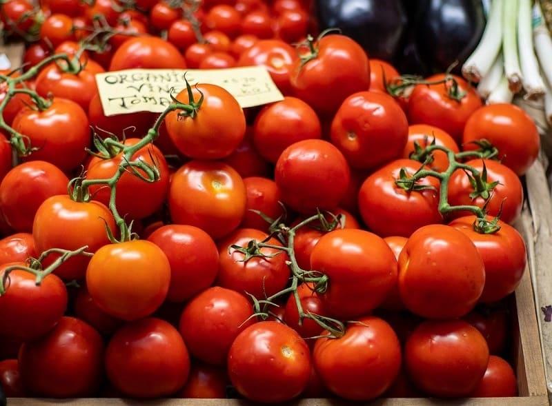 El sector de la agricultura ecologica en España