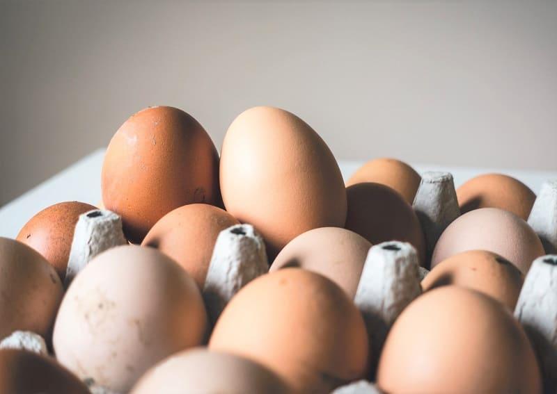 Fipronil en huevos