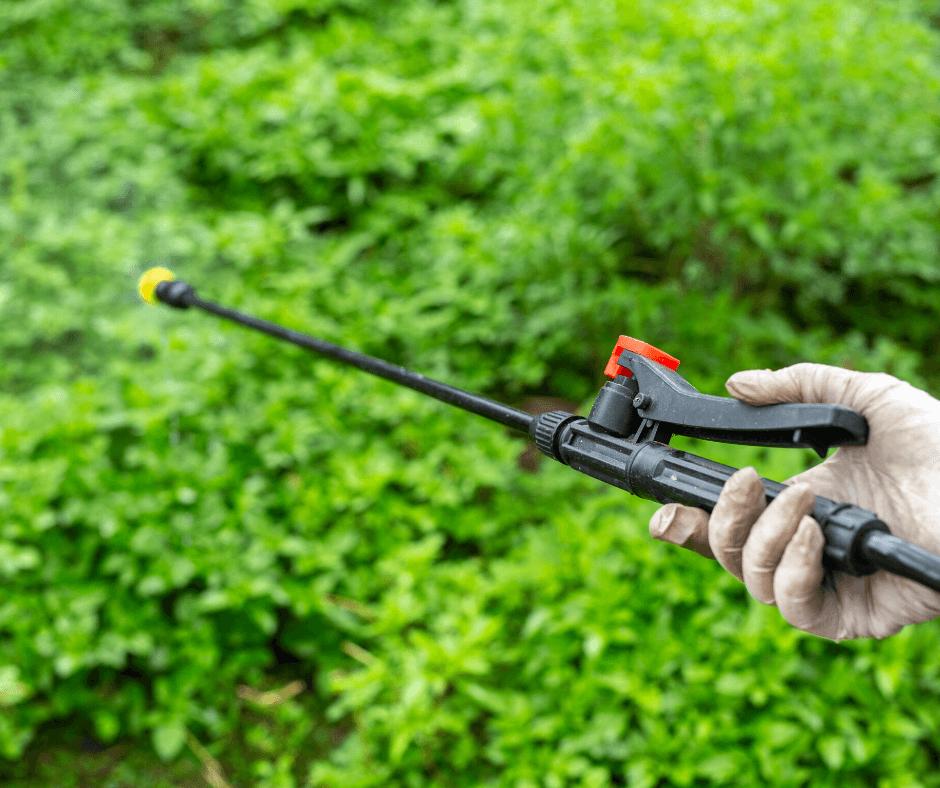 Pesticida Fondo