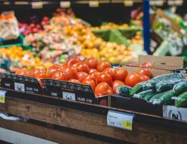 Control y análisis de micotoxinas en cultivos y alimentos