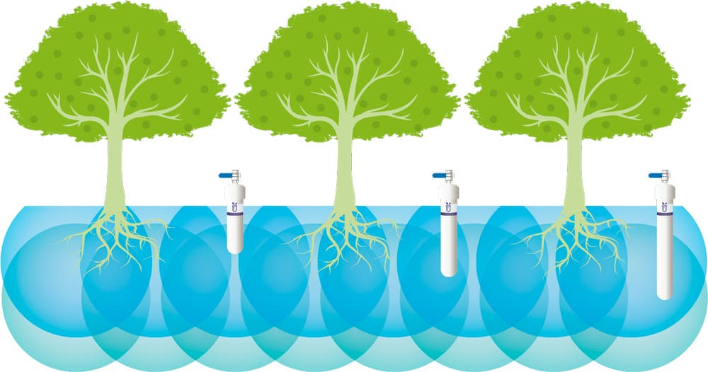 suelo-planta-agua