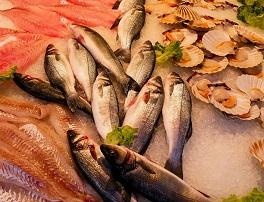 pescado seguridad alimentaria