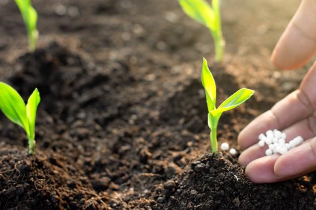 servicios analiticos para agricultura fertilizantes y abonos