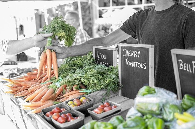 Alimentos ecológicos foto