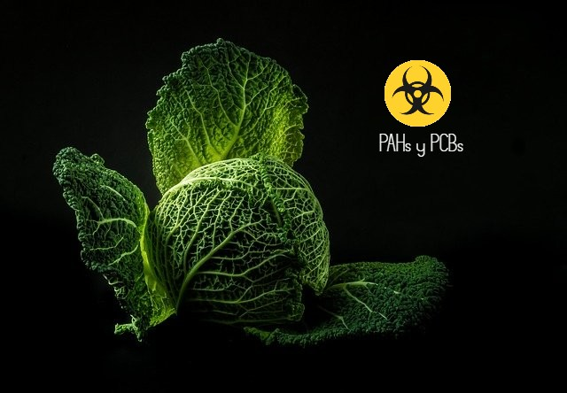 PAH y PCB
